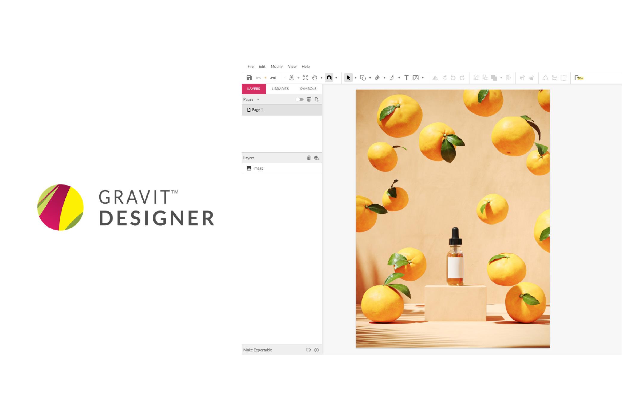 UI of Gravit-Designer software